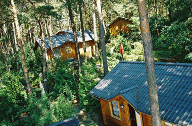 Mitten im Wald und trotzdem am Meer auf Usedom - die Blockhäuser vom AKZENT Hotel Kaliebe in Trassenheide